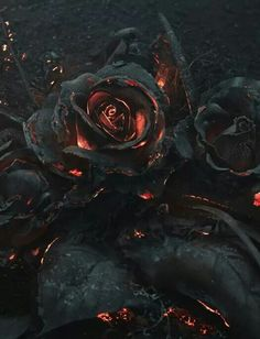 Black Rose at Otherworld</a><br> by <a href='/profile/RavenHeart-Ban--Draoidh/'>RavenHeart Ban- Draoidh</a>