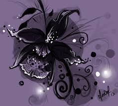 The Black Orchid </a><br> by <a href='/profile/RavenHeart/'>RavenHeart</a>